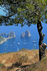traghetti per Capri