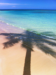 Dove prenotare le vacanze